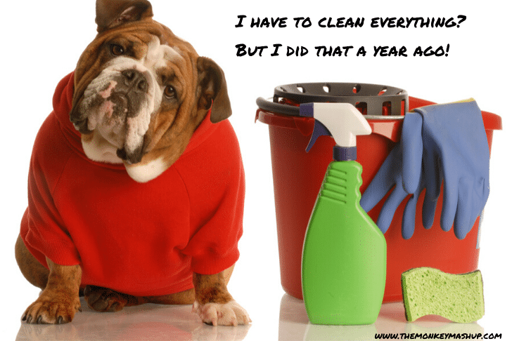 life hack for kids have the dog do the cleaning